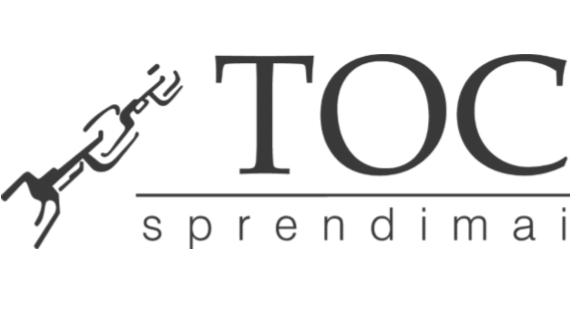 TOC sprendimai – LEAN ir TOC metodikų ekspertai